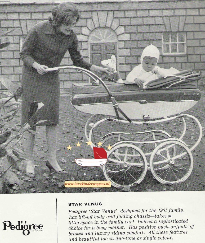 Pedigree Star Venus 1961